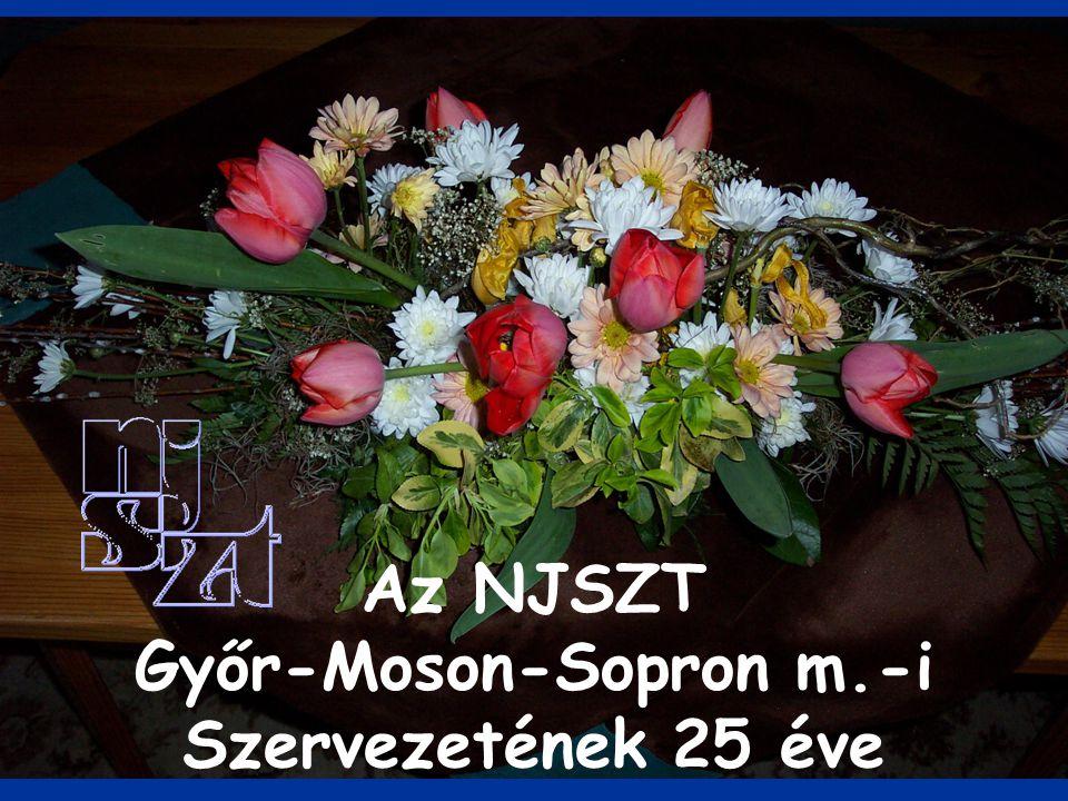 Az NJSZT Győr-Moson-Sopron m.-i