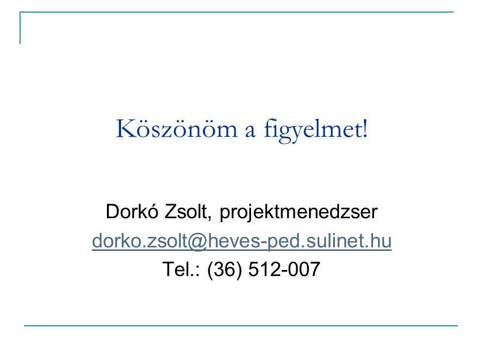Dorkó Zsolt, projektmenedzser