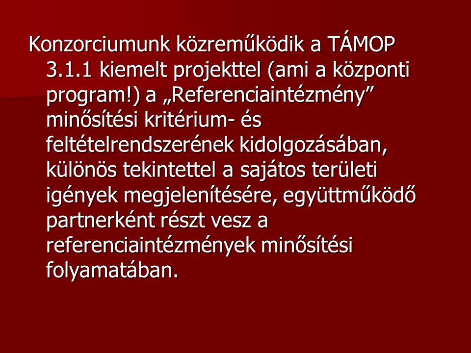 Konzorciumunk közreműködik a TÁMOP 3. 1
