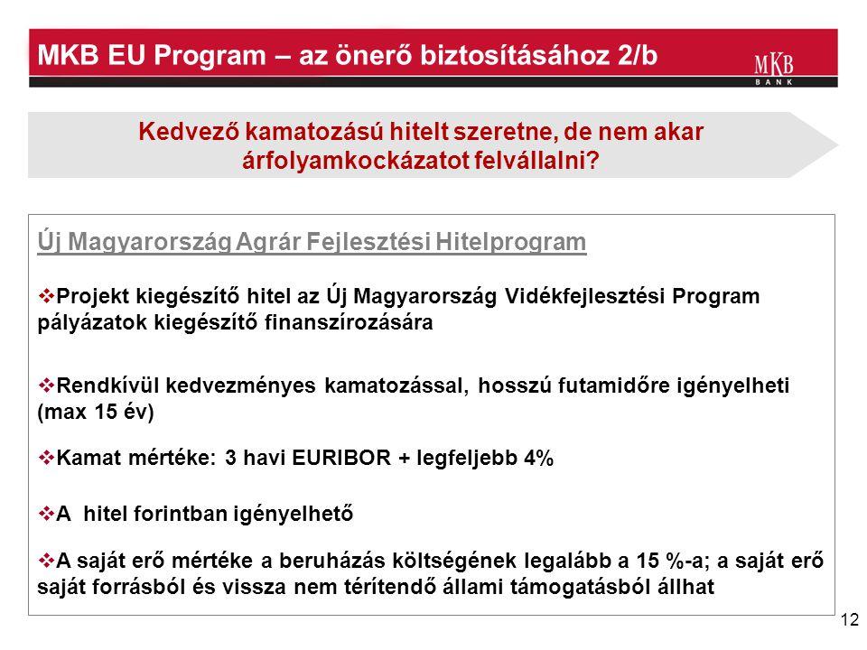 MKB EU Program – az önerő biztosításához 2/b