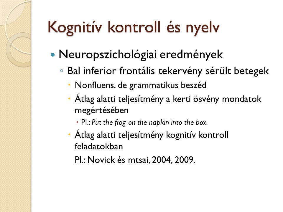 Kognitív kontroll és nyelv