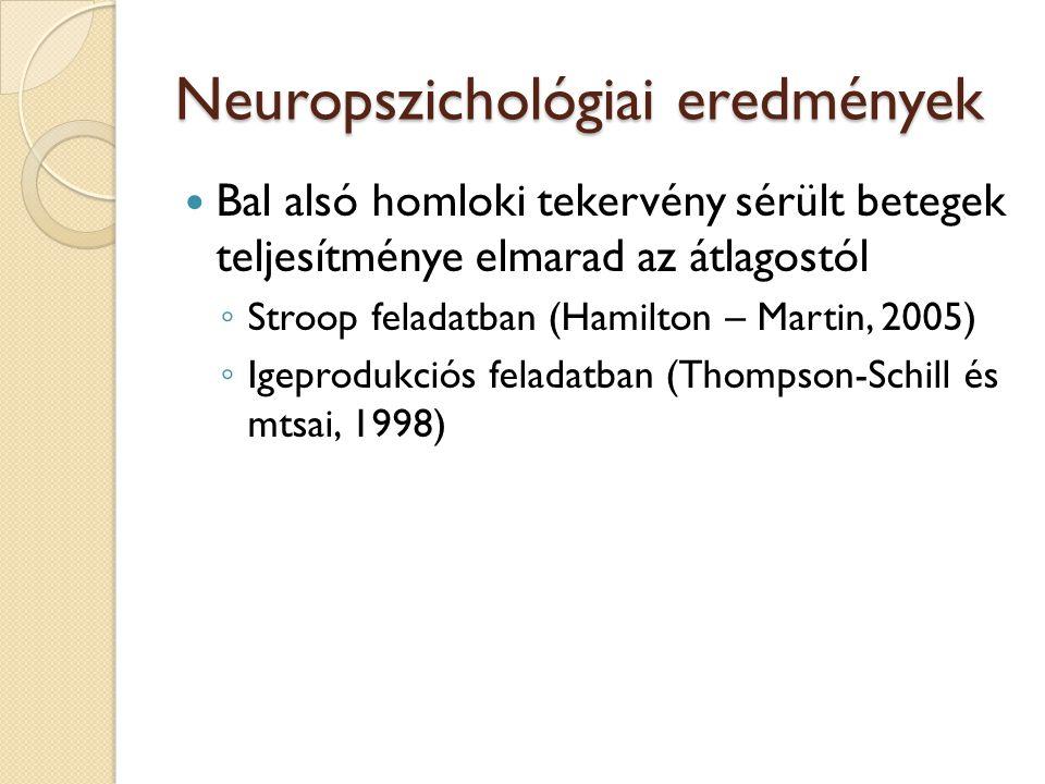 Neuropszichológiai eredmények