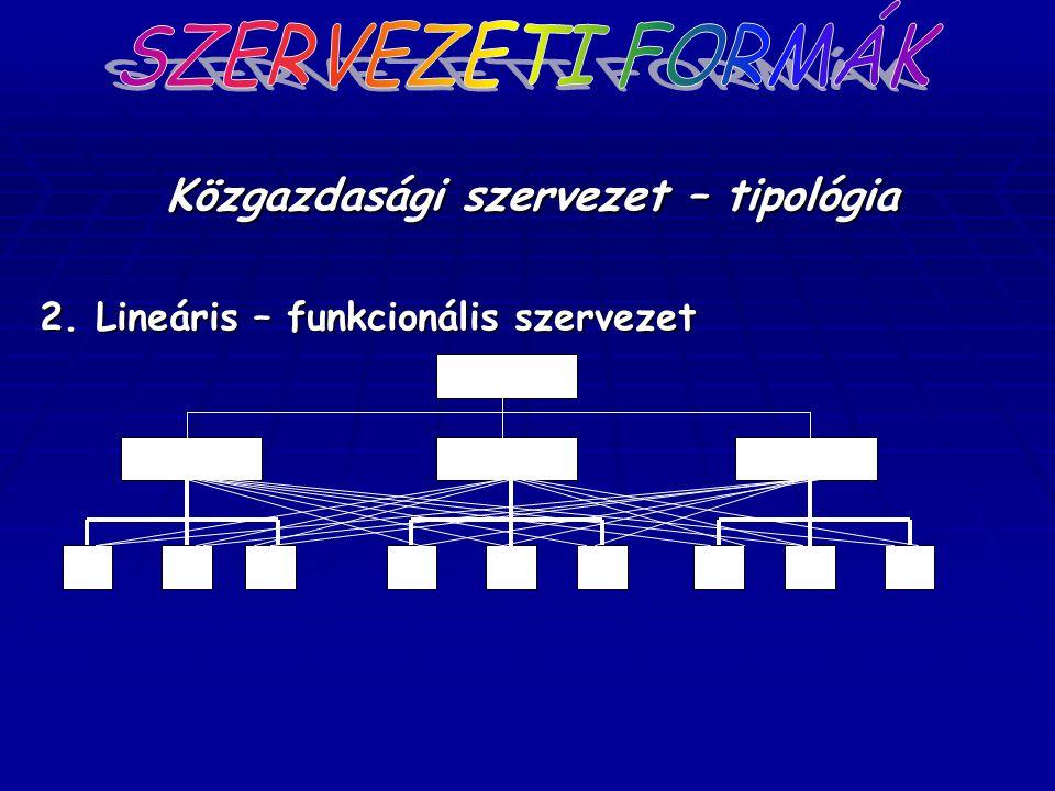 Közgazdasági szervezet – tipológia