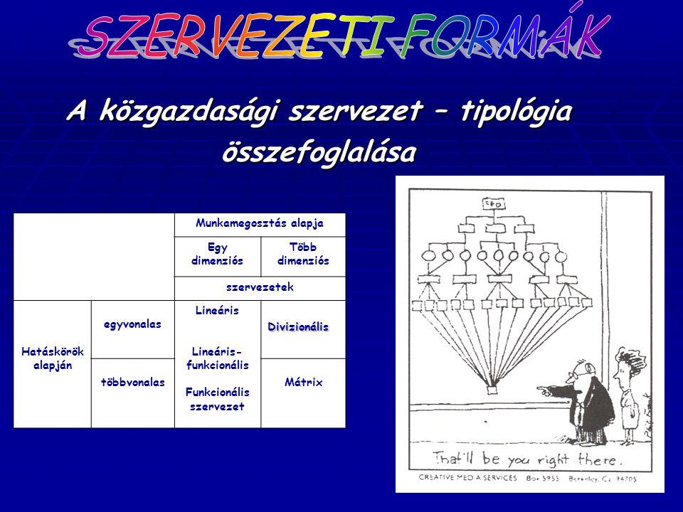 SZERVEZETI FORMÁK A közgazdasági szervezet – tipológia összefoglalása