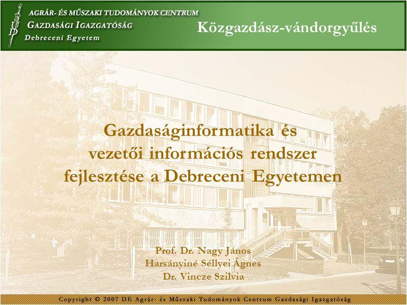 Gazdaságinformatika és vezetői információs rendszer