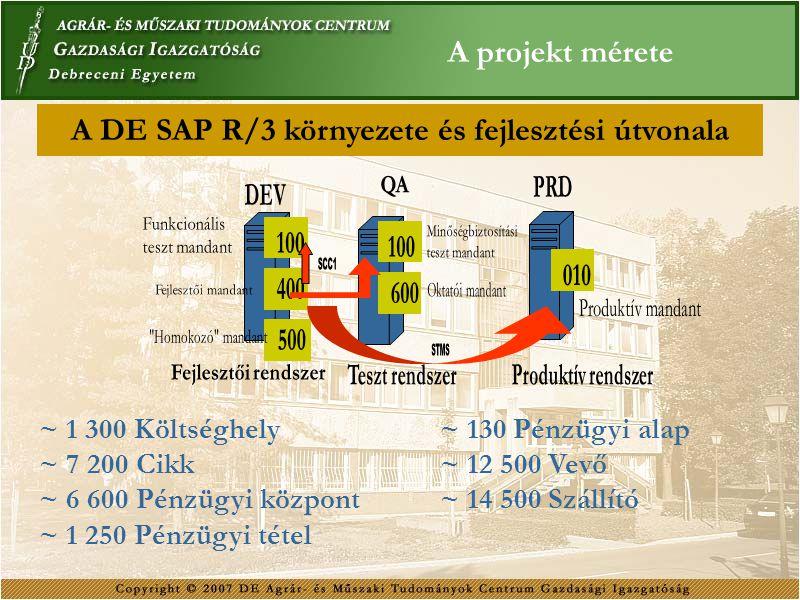A DE SAP R/3 környezete és fejlesztési útvonala