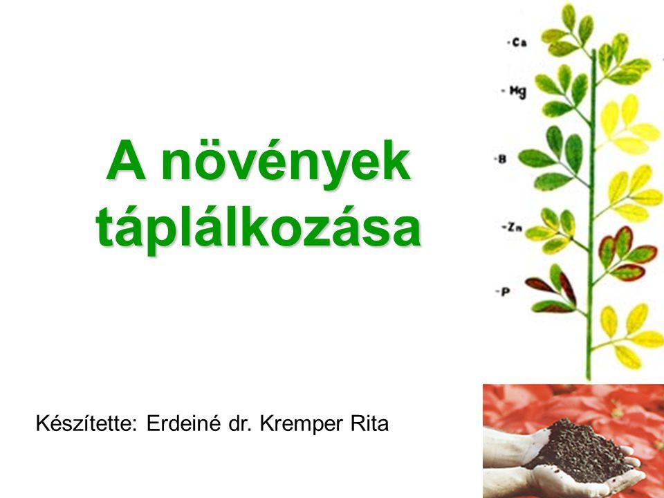 A növények táplálkozása