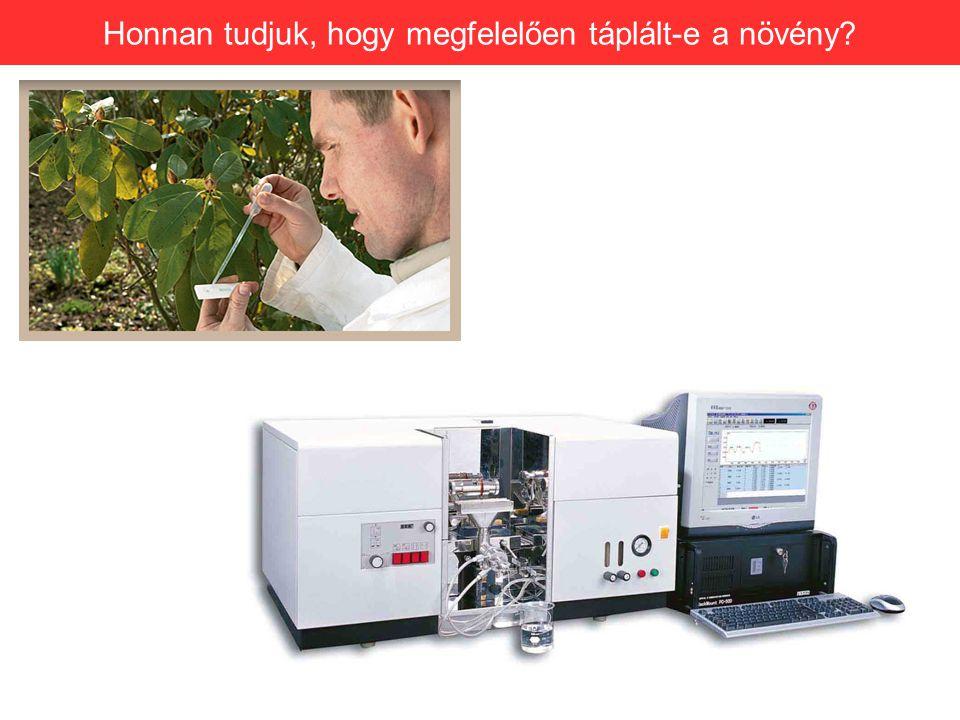 Honnan tudjuk, hogy megfelelően táplált-e a növény