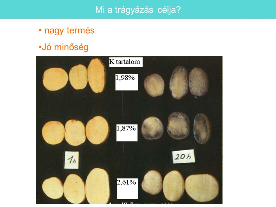 Mi a trágyázás célja nagy termés Jó minőség 16