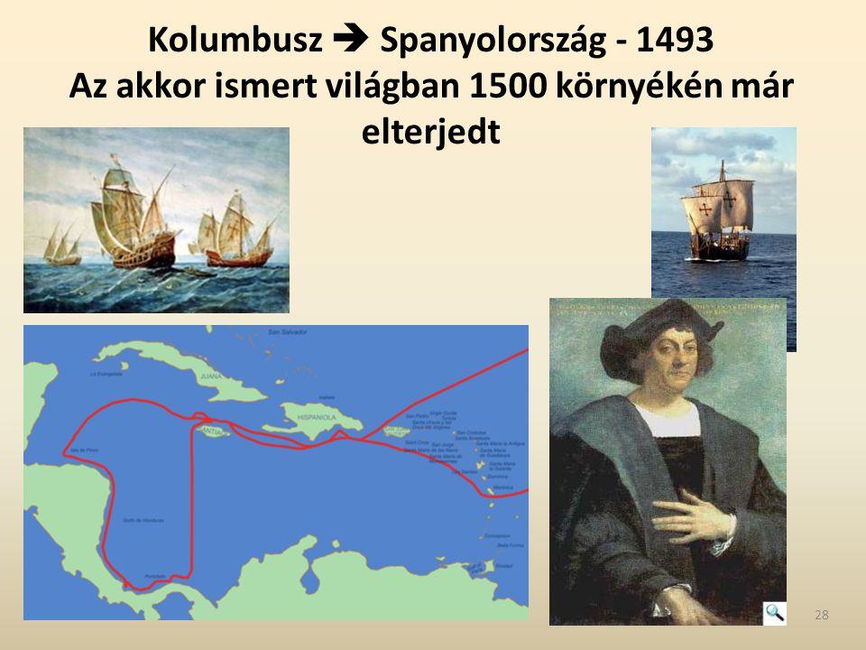 Kolumbusz  Spanyolország - 1493 Az akkor ismert világban 1500 környékén már elterjedt