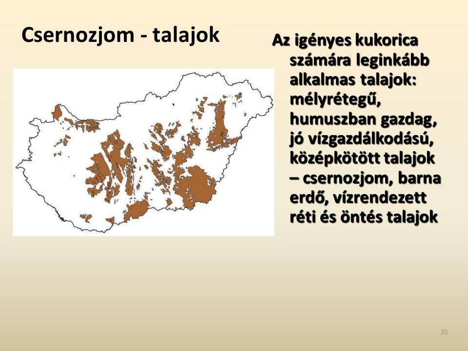 Csernozjom - talajok