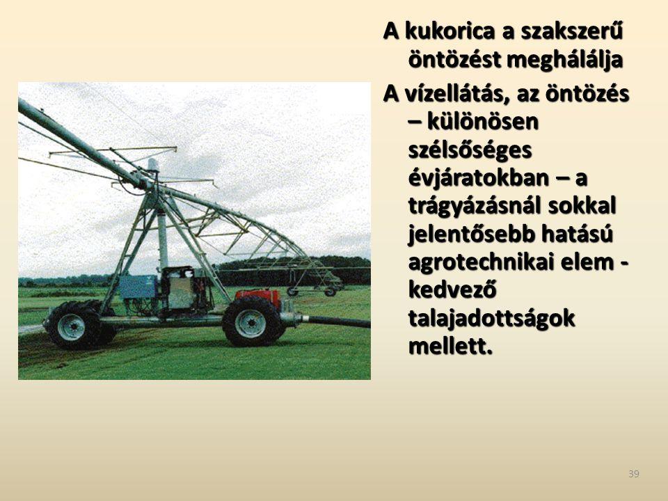 A kukorica a szakszerű öntözést meghálálja