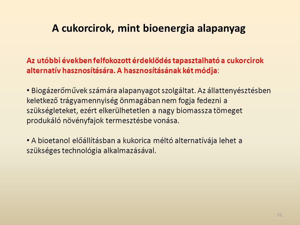 A cukorcirok, mint bioenergia alapanyag