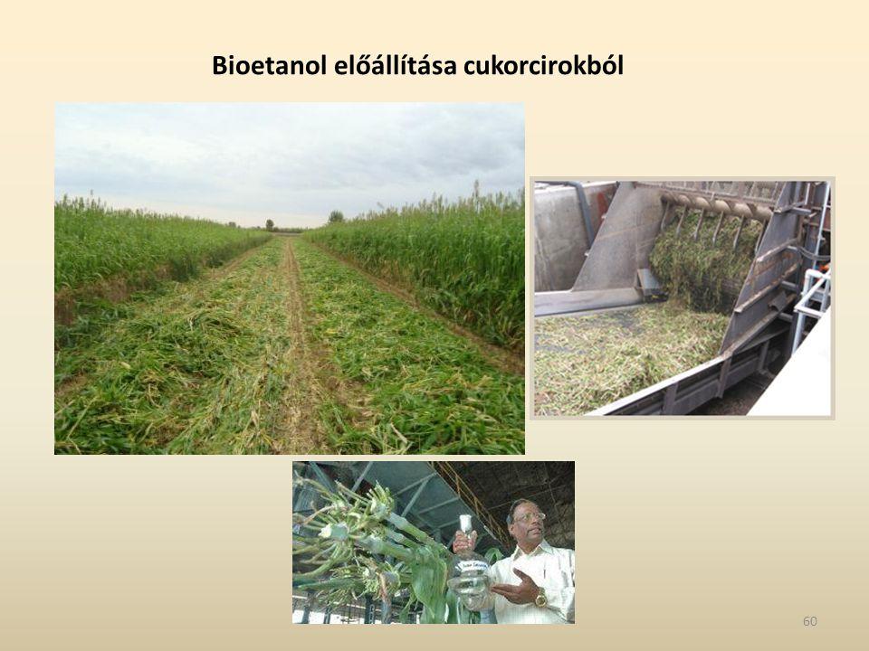 Bioetanol előállítása cukorcirokból