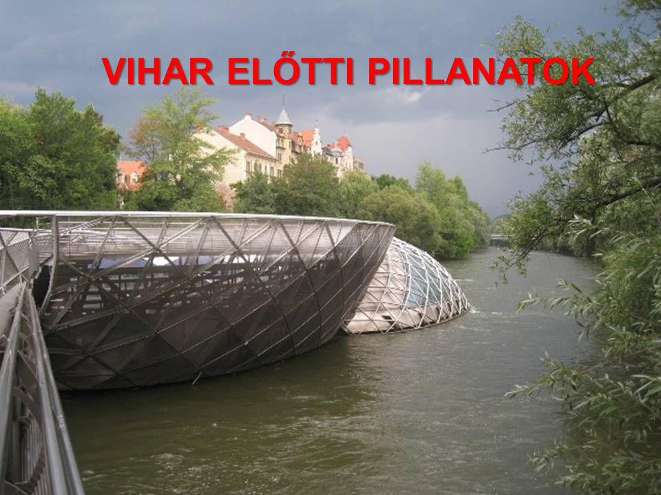 VIHAR ELŐTTI PILLANATOK