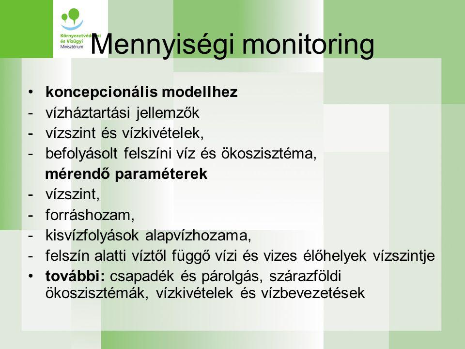 Mennyiségi monitoring