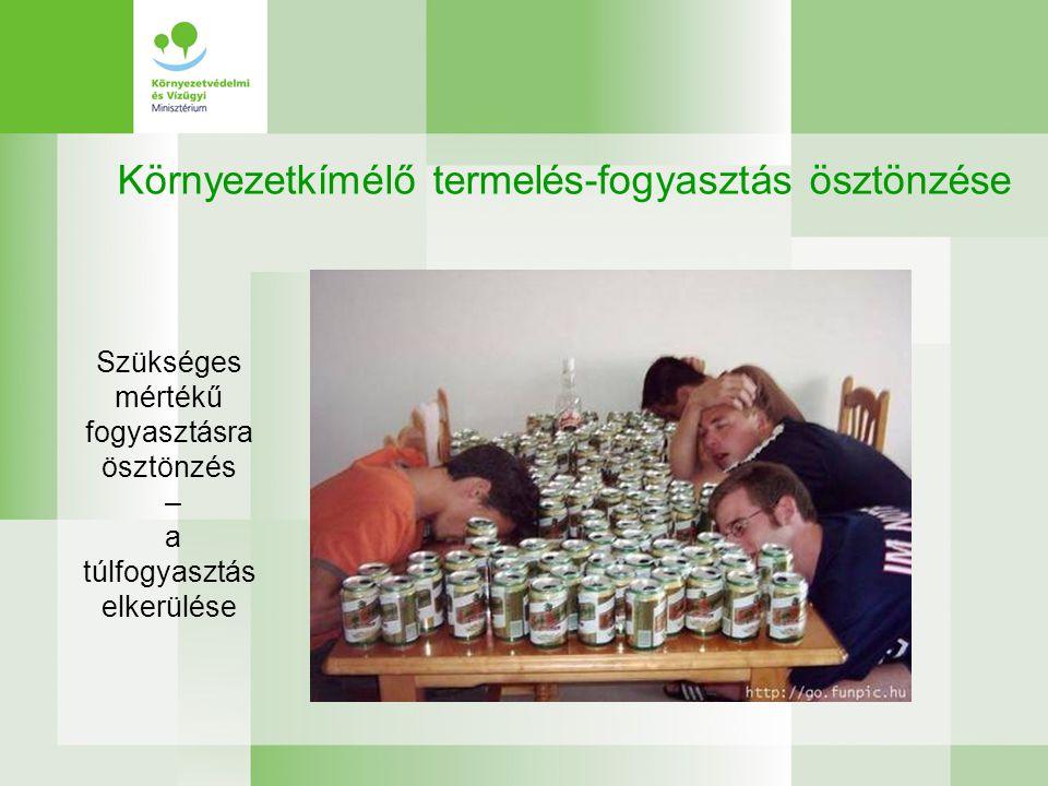 Környezetkímélő termelés-fogyasztás ösztönzése