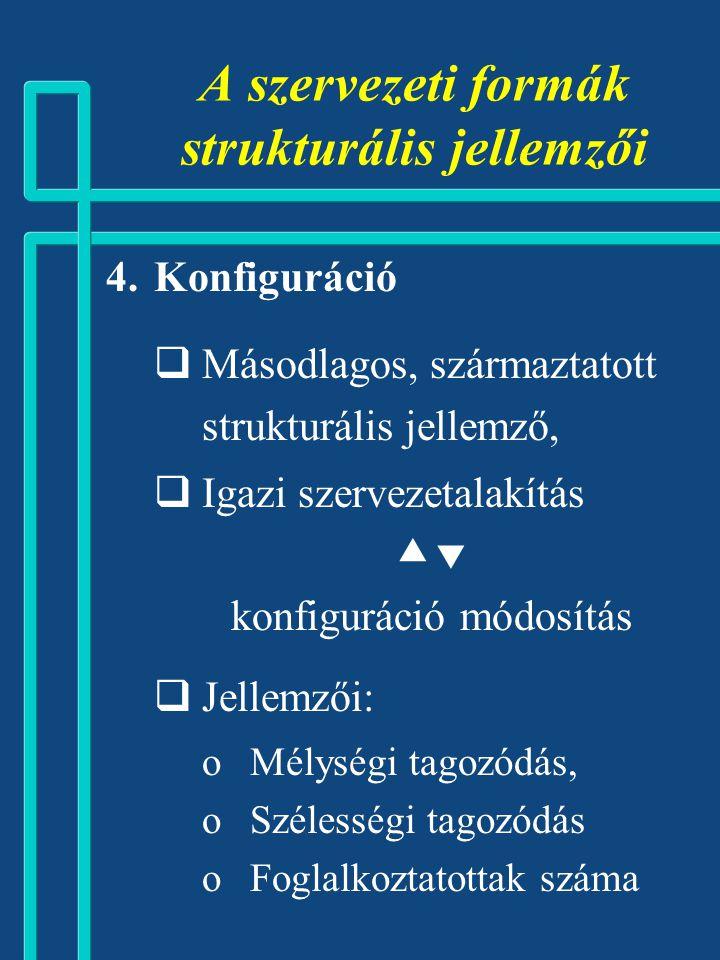 A szervezeti formák strukturális jellemzői
