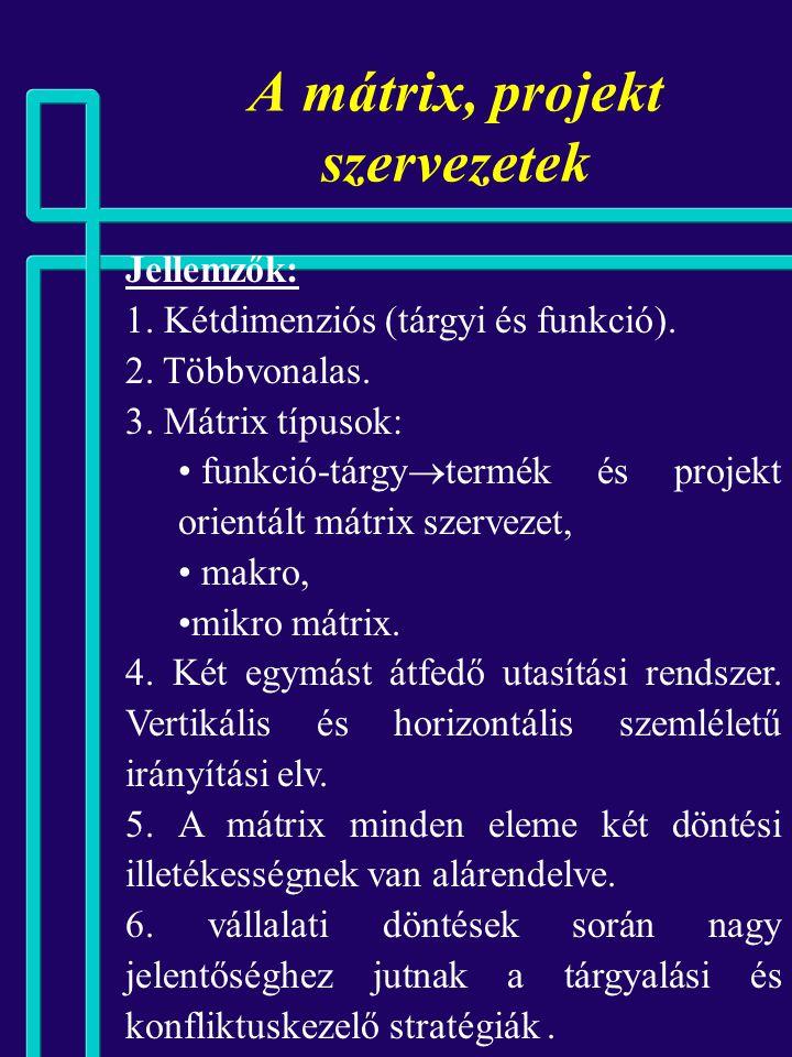 A mátrix, projekt szervezetek