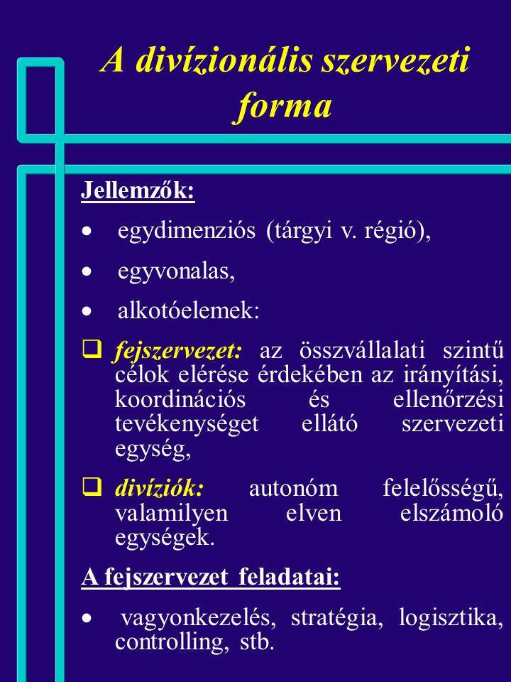 A divízionális szervezeti forma