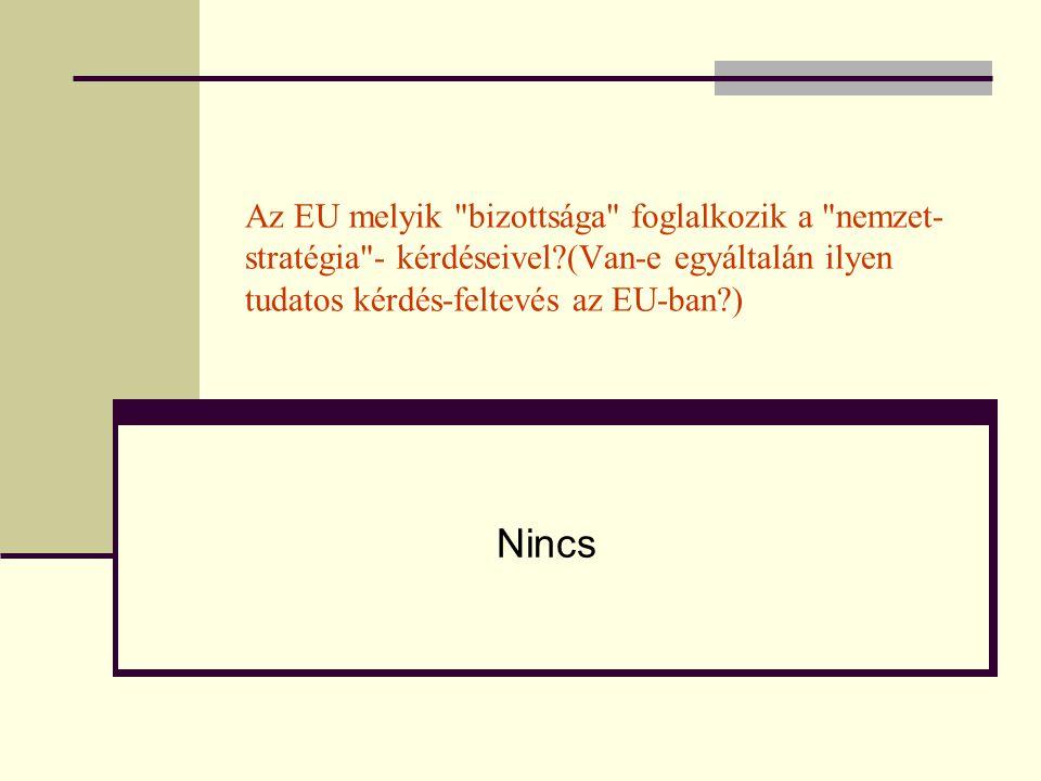 Az EU melyik bizottsága foglalkozik a nemzet-stratégia - kérdéseivel (Van-e egyáltalán ilyen tudatos kérdés-feltevés az EU-ban )