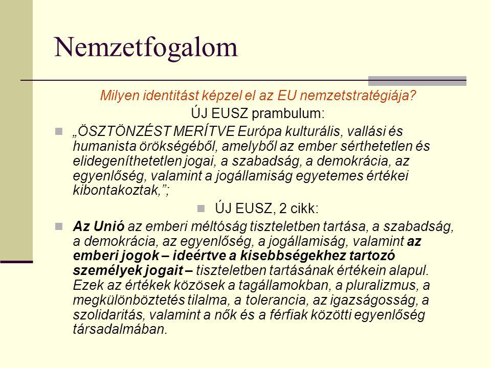 Milyen identitást képzel el az EU nemzetstratégiája