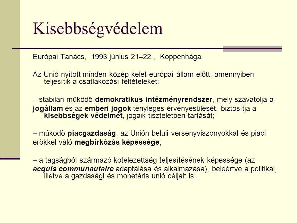 Kisebbségvédelem Európai Tanács, 1993 június 21–22., Koppenhága