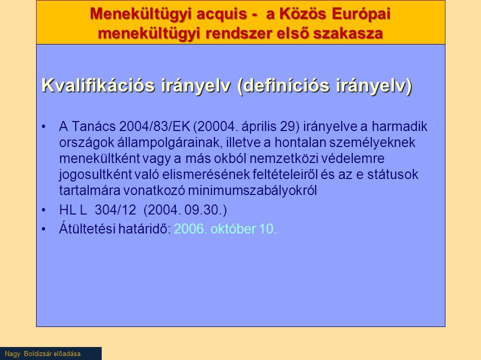 Kvalifikációs irányelv (definíciós irányelv)