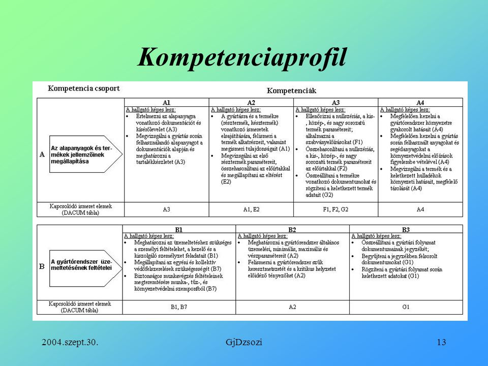 Kompetenciaprofil 2004.szept.30. GjDzsozi