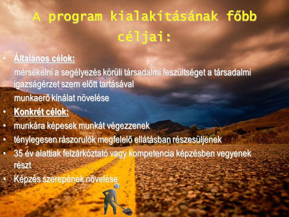A program kialakításának főbb céljai: