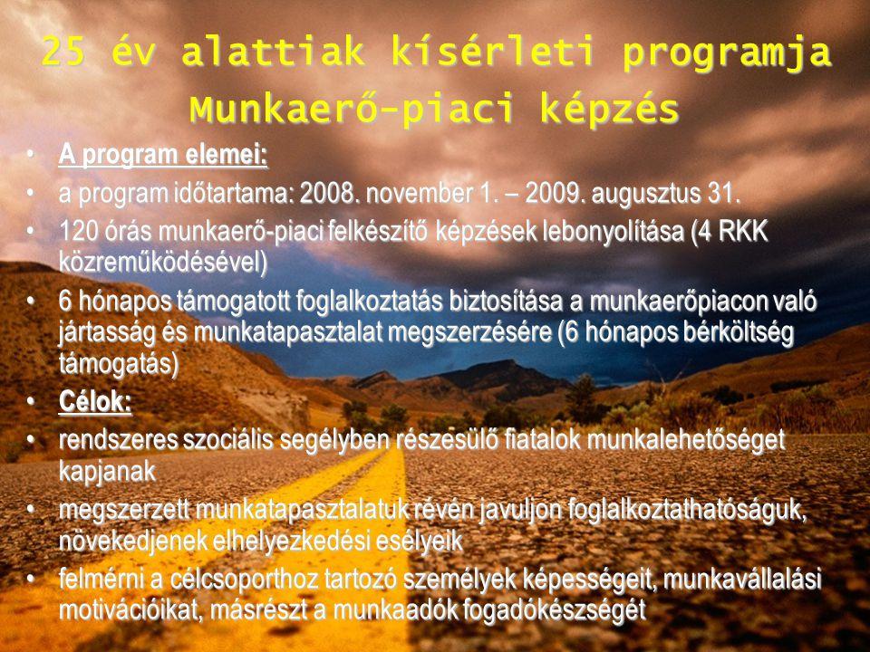25 év alattiak kísérleti programja Munkaerő-piaci képzés