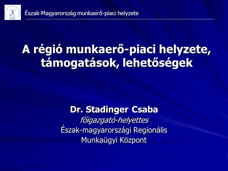 A régió munkaerő-piaci helyzete, támogatások, lehetőségek