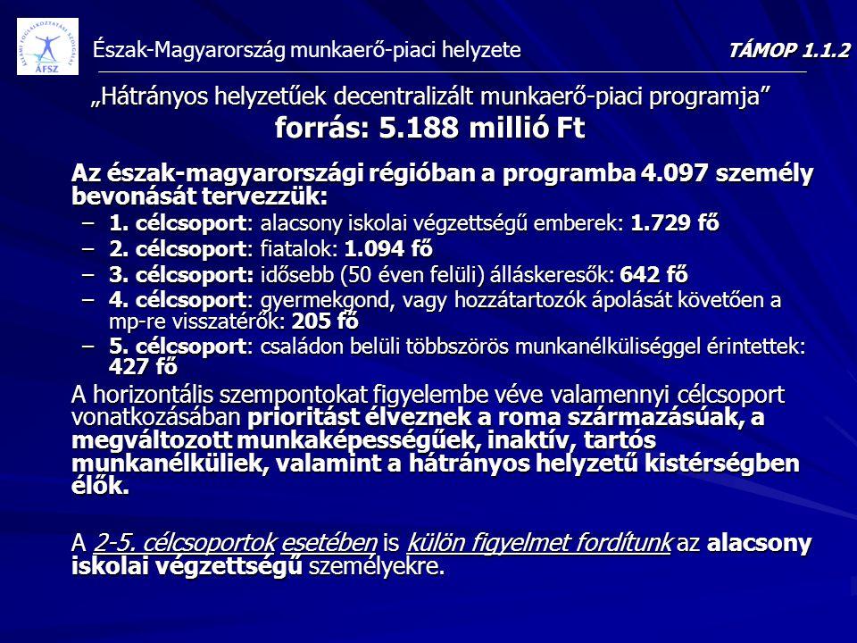 """TÁMOP 1.1.2 """"Hátrányos helyzetűek decentralizált munkaerő-piaci programja forrás: 5.188 millió Ft."""