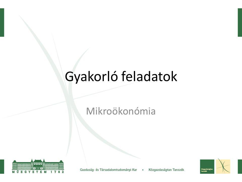 Gyakorló feladatok Mikroökonómia