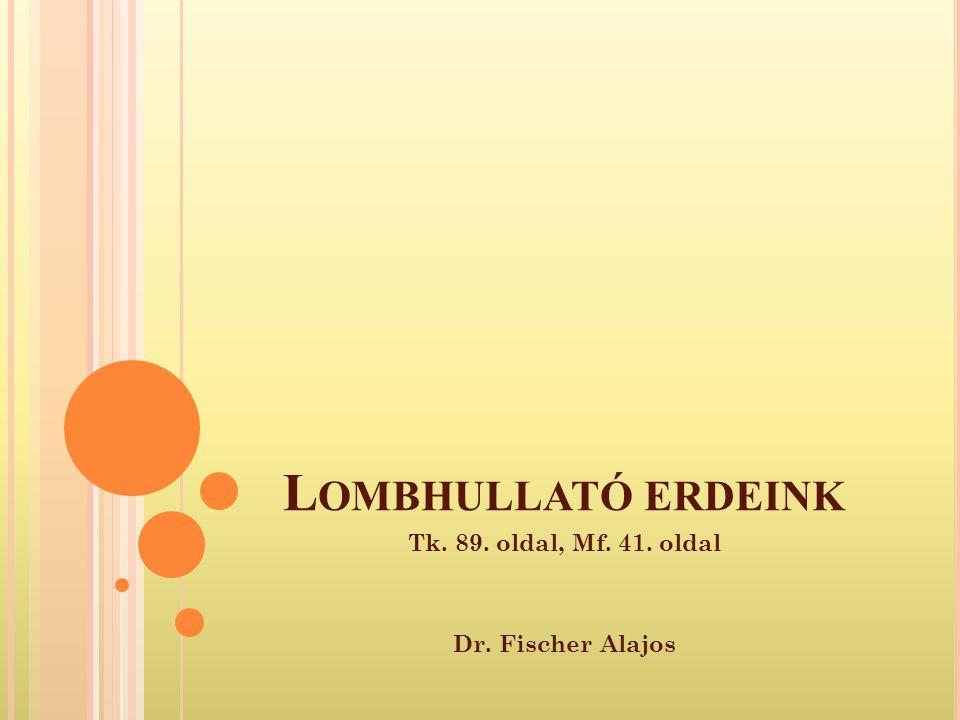 Tk. 89. oldal, Mf. 41. oldal Dr. Fischer Alajos