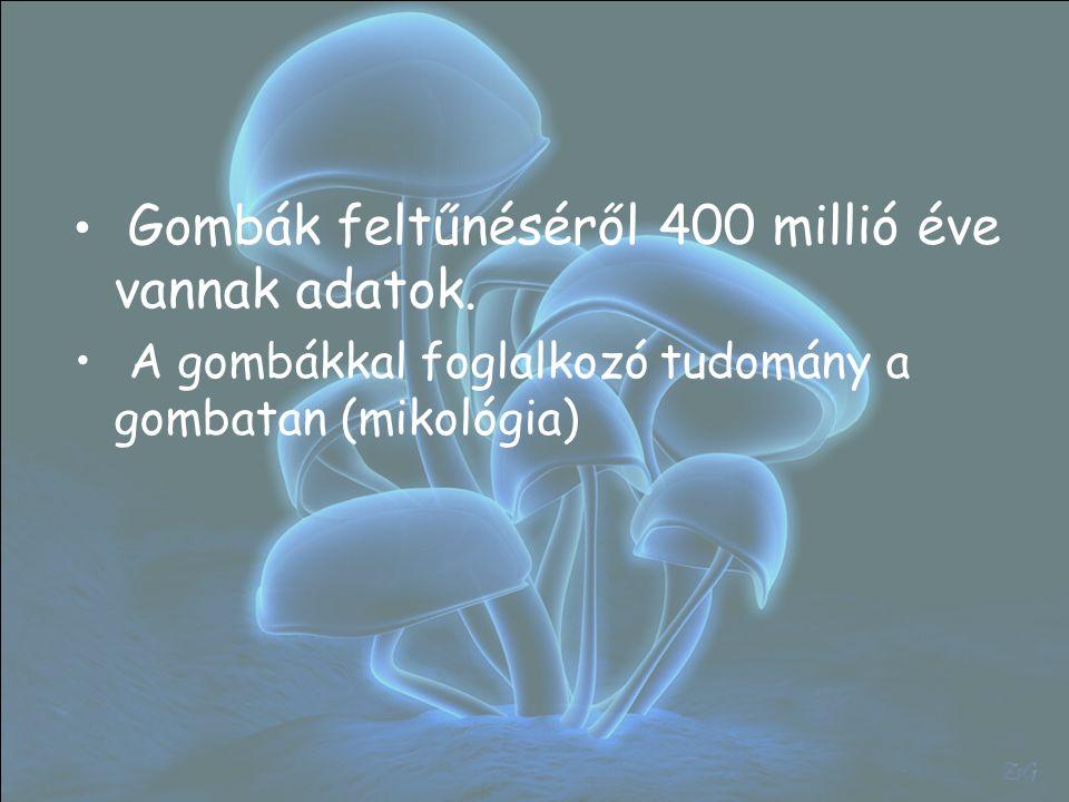 Gombák feltűnéséről 400 millió éve vannak adatok.