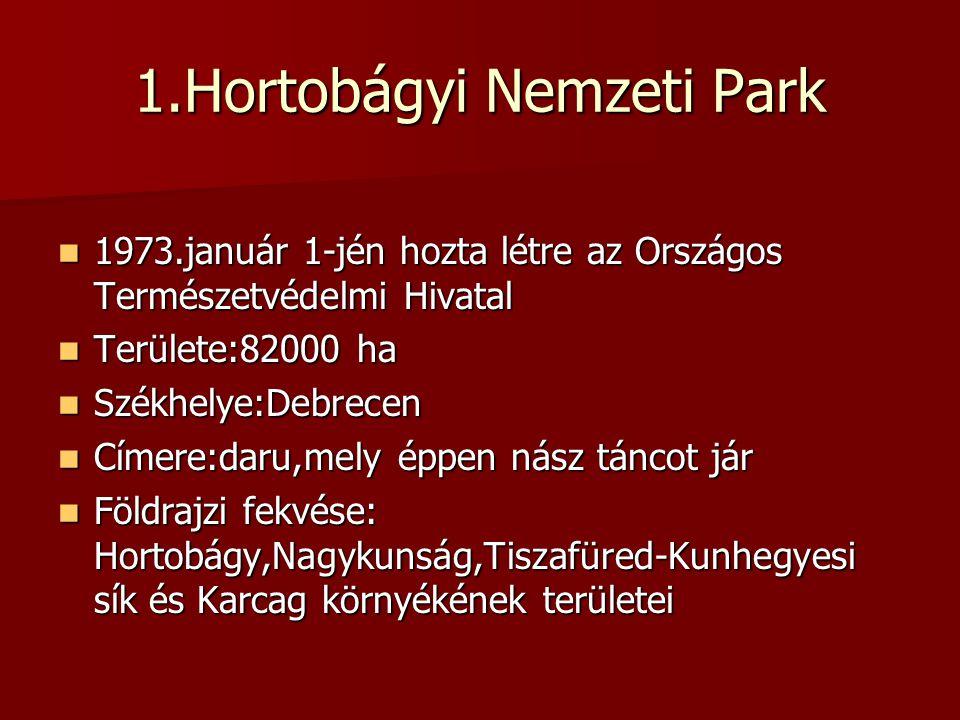 1.Hortobágyi Nemzeti Park