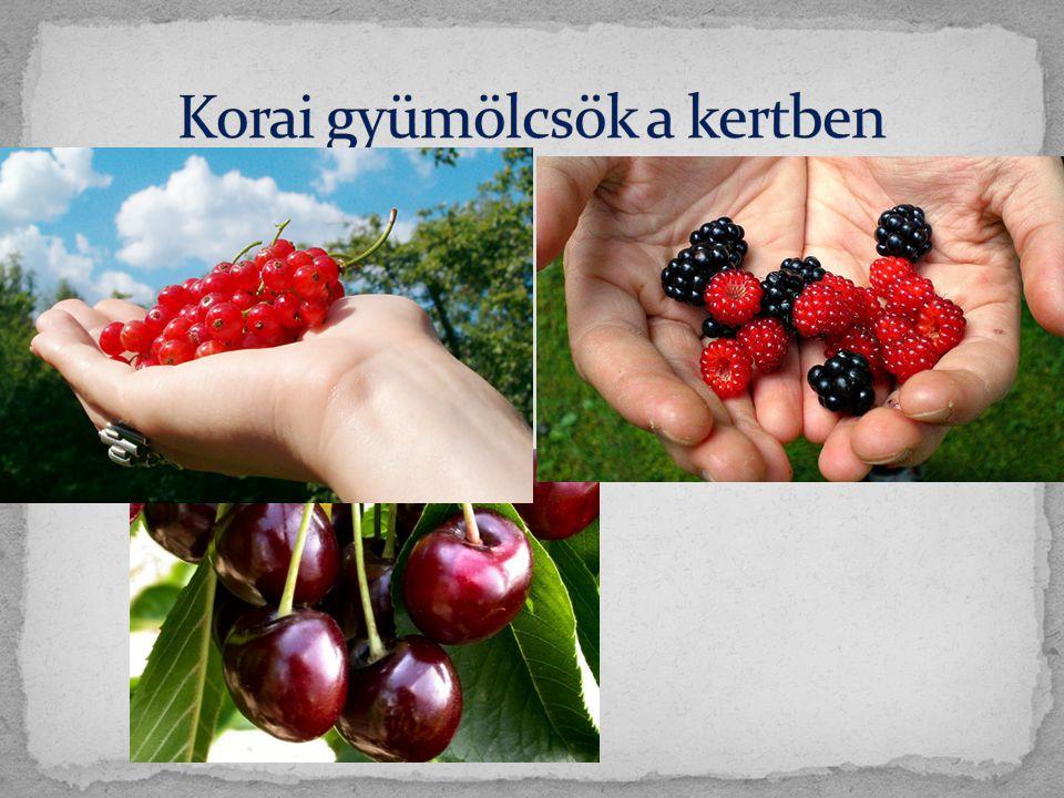 Korai gyümölcsök a kertben