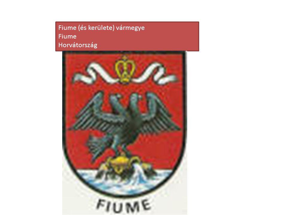 Fiume (és kerülete) vármegye