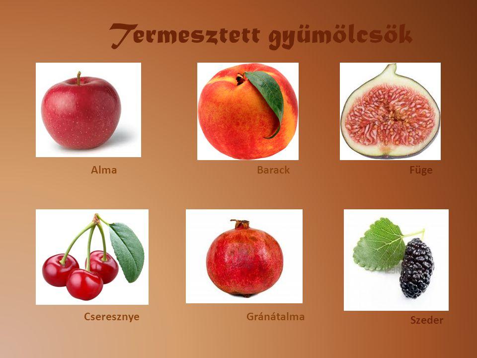 Termesztett gyümölcsök
