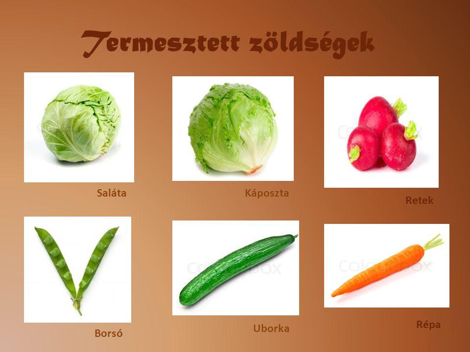 Termesztett zöldségek