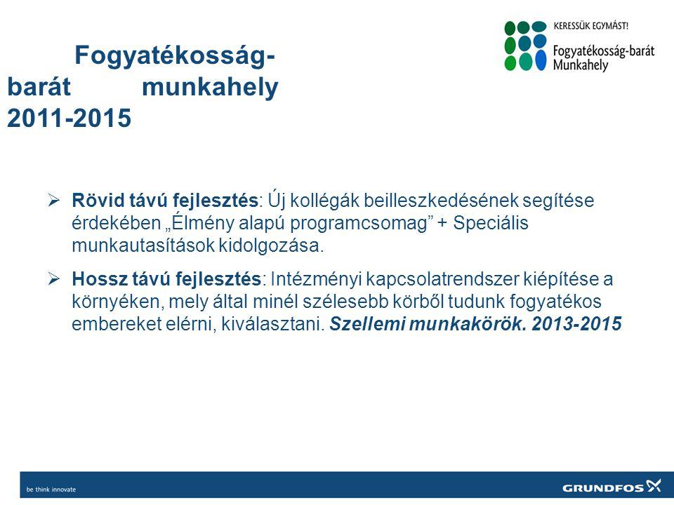 Fogyatékosság-barát munkahely 2011-2015