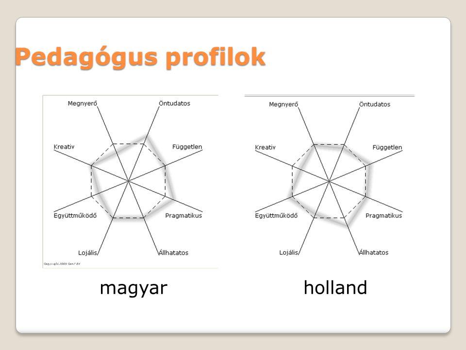 Pedagógus profilok magyar holland 11
