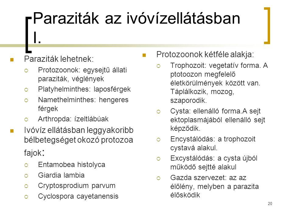 Paraziták az ivóvízellátásban I.
