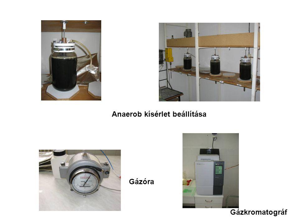 Anaerob kísérlet beállítása
