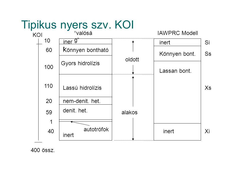 Tipikus nyers szv. KOI nem-denit. het. inert valóság IAWPRC Modell