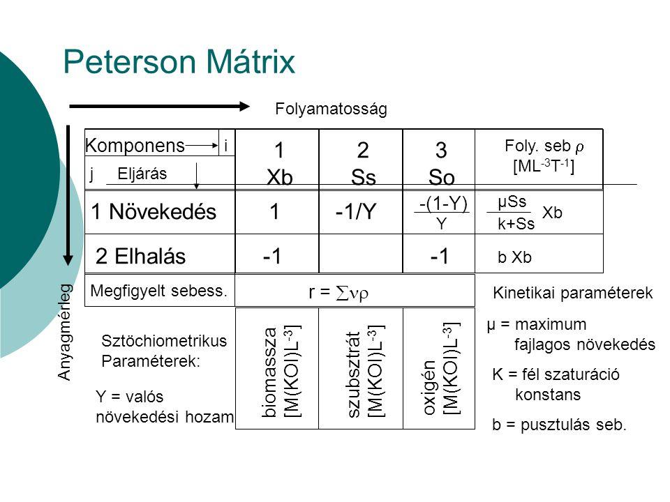 Peterson Mátrix 1 Xb 2 Ss 3 So 1 Növekedés 2 Elhalás -1/Y -1 Komponens