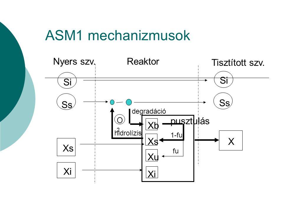 ASM1 mechanizmusok Nyers szv. Reaktor Tisztított szv. Si Ss Xs Xi X