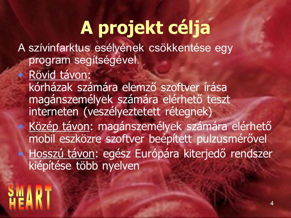 A projekt célja ART SM HE