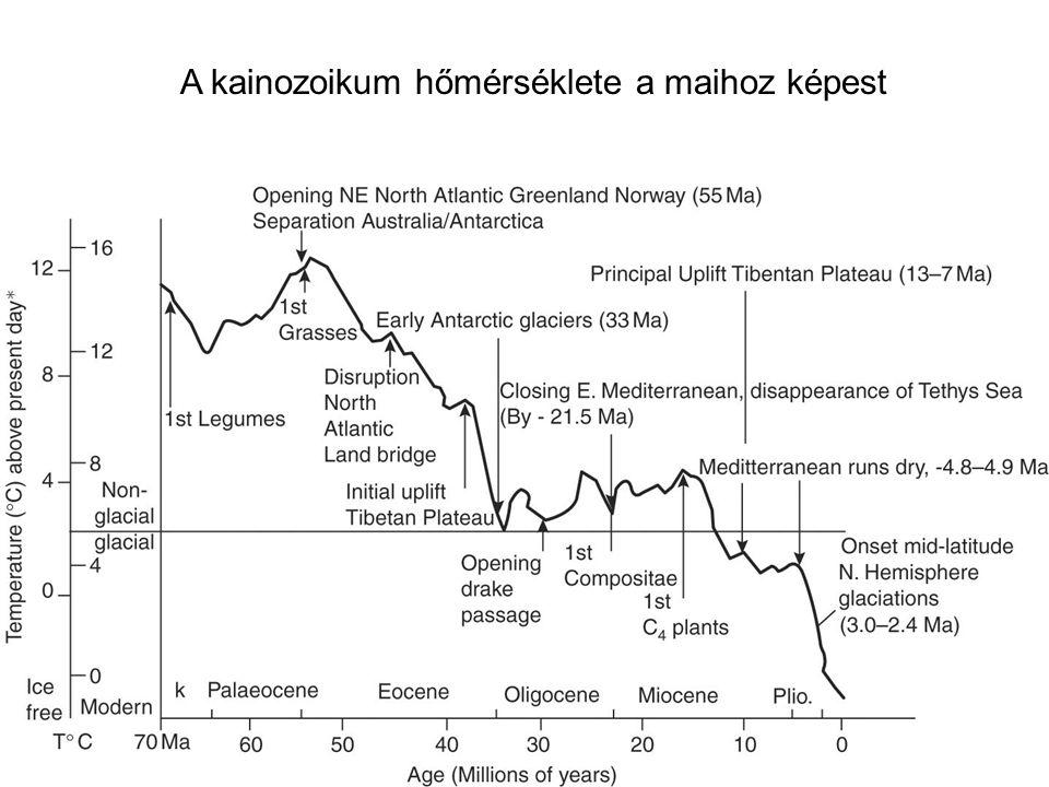 A kainozoikum hőmérséklete a maihoz képest